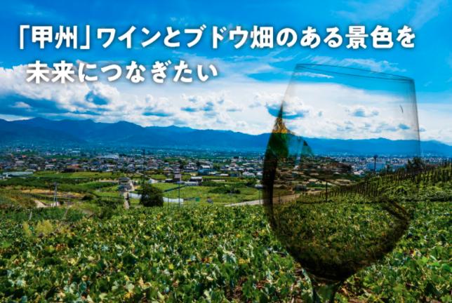 """耕作放棄地が増える""""甲州""""のぶどう畑に、新規就農者支援で新しい担い手を!01"""